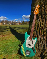 Photosynthesis (Pennan_Brae) Tags: electricbass guitar 4string music guitarphotography guitarphoto musicphotography fenderguitars fenderguitar mustangbass fendermustang fender fenderbass bass bassguitarist bassist bassguitar