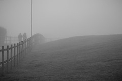 Walk into the Unknown (Twjst) Tags: mist bw nebel