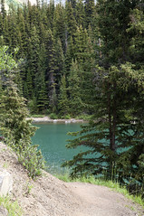 Along The Trail, Maligne Lake - Jasper National Park (Select42) Tags: jaspernationalpark jasper lake lakescape landscape water trees outdoor nature