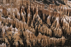 Bryce Canyon Amphitheater - the Hoodoos (TAC.Photography) Tags: hoodoos sandstone pink orange bryce nationalparks southwestern tomclarknet tacphotography