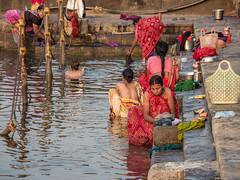 LR Madhya Pradesh 2018-2240263 (hunbille) Tags: birgittemadhyapradesh20181lr ghat ahilyabai ghats ahilyabaighat india madhya pradesh madhyapradesh maheshwar narmada river holy ahilya