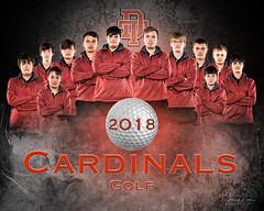 Cardinal Golf (jrash168) Tags: golf team poster