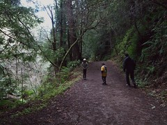 0805 Wide Shoulder (mliu92) Tags: purisimacreek redwood preserve halfmoonbay hiking cubscouts