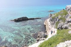 2017-11-26 11.58.52 (whiteknuckled) Tags: isla mujeres wedding alexis margaret trip vacation mexico rachel steve