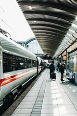 everything goes, anything goes (lina zelonka) Tags: mainz germany deutschebahn linazelonka train zug bahn ice fernverkehr trainstation bahnhof mainzhbf hauptbahnhof travel vertical lines railway nikond7100 18140mm