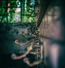 hooks (tbolt-photography.com) Tags: derelict derp derelictplaces derelictbuildings decay abandoned abandonedplaces abandonedbuildings urbex urbandecay nikon