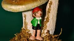 The Adventures of Pinocchio (karinrogmann) Tags: oneuponatime theadventuresofpinocchio carlocollodi march19 macromondays