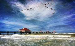 the pier (jackaloha2) Tags: pier florida clearwaterbeach gulfofmexico birds texture waves beach water clouds
