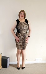 Leopard Print and Black Dress March 2018 001 (Jenny Gloria Williams) Tags: transgendered tranny transvestite tg transvestie trannie tranvesti transvestit transvestism travestido transvestitism crossdresser crossdressing crossdress crossdressed leopardprint higheels jennywilliamstv