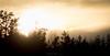 The Setting Sun (Mikko Manner) Tags: sipoonkorpinationalpark nikond7200 tamron18400mmf3563diiivchld sipoo vantaa finland sun sunset sky blown trees treeline nature woods