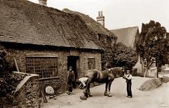 Bradfield Smithy (footstepsphotos) Tags: bradfield smithy berkshire people horse blacksmith shoe village old vintage photograph past historic