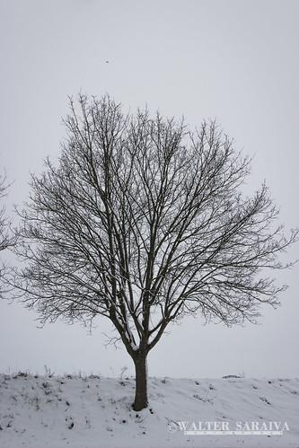 Thillay neige-10