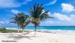 Listo para la siesta (johnfranky_t) Tags: amaca johnfranky t messico yukatan palme spiaggia nuvole cocco caraibi hamaca hammock clouds mexico tree árbol samsung s7 sky