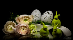 Easter elegance (Magda Banach) Tags: canon canon80d rosenthal rosenthaleggs sigma150mmf28apomacrodghsm blackbackground bunny buttercup buttercups colors egg eggs flora flower flowerbud flowers green plants