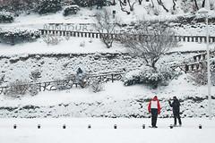 Bonjour la neige (Laurent Pelleray) Tags: biarritz neige snow winter hiver nikon incroyable rare unbelievable white dxo bask country pays basque euskadi kostaldea flakes flocons unique