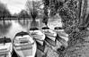 boats for hire (Francis Mansell) Tags: boat vehicle rowingboat shakespeareanheroines tree ivy river water ophelia riveravon stratforduponavon monochrome blackwhite cressida ursula park shakespeare williamshakespeare niksilverefexpro2