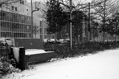 IMG_9260 (MarieCollinPhotos) Tags: neige flocons banc noiretblanc blackandwhite city villle toulouse blagnac tramway hiver blanc noir seul froid
