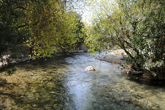 Rui de l'Algar (seahawkgfx) Tags: algar riu fuentes fluss river spring frühling water