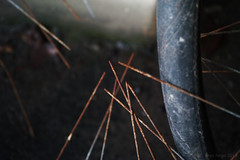SDIM4948 Kopie (sven_fargo) Tags: austria abstract abstractphotography streetphoto sigma street streetphotos sabotage quattro dp3 detail detailphotograpy wien urban minimalism mnmlsm minimal metall color colour colourful rust odd österreich old object city found farben