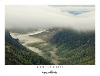 Greening Gorge