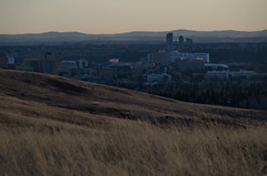 Calgary Cityscape from Nose Hill (Bracus Triticum) Tags: calgary cityscape from nose hill カルガリー アルバータ州 alberta canada カナダ 12月 december winter 2017 平成29年 じゅうにがつ 十二月 jūnigatsu 師走 shiwasu priestsrun