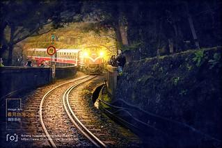 台灣阿里山森林鐵道Taiwan Alishan Forest Railway