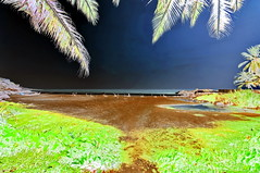 India - Kerala - Kovalam - 31bb (asienman) Tags: india kerala kovalam beach asienmanphotography asienmanphotoart asienmanpaintography