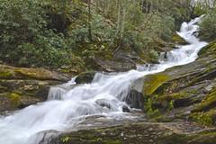 Roaring Fork Falls (esywlkr) Tags: waterfall pisgah nationalforest nc wnc northcarolina nature beautyofwater stream