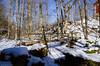Rupu's clk-77 (rupu_ralf) Tags: gränna sweden jönköping snowland lake city bluesy red house wooden bridge trees sigma 1750 f28