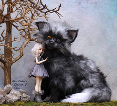 Furry (pure_embers) Tags: pure embers resin bjd 16 doll dolls ns uk girl maskcat feline mini eleanor pureembers pureemberseleanor photography photo ball joint portrait white hair cupcakecurio silver fox art ooak thecharmedlanddolls charmed land furry friend magical creatures fantasy
