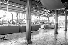 Mercado de Peixe (W. Pereira) Tags: brasil brazil sampa sãopaulo wpereira wanderleypereira aveiro europa nikon portugal velhocontinente wpereiraafotografias wanderleypereirafotografias