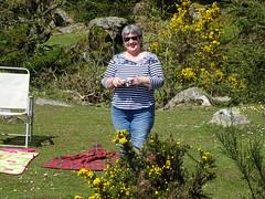 DSC07437 (guyfogwill) Tags: belever dartmoor dartmoornationalpark devon guyfogwill unitedkingdom dartmoorforest gbr