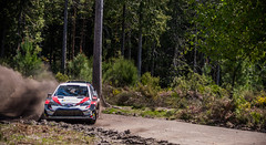 DSC_1335 (Pedro @lves) Tags: carvalhais basto mondim lightroom photography photo nikon flatout testing 2018 portugal rally racing gazoo latvala yaris wrc toyota