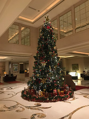 St Regis Singapour (travelguys1) Tags: stregis stregissingapour hotel luxuryhotel spg spglife starwood