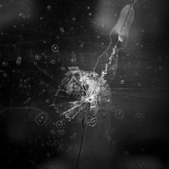 Bullet (RoryO'Bryen) Tags: roryobryen rolleiflex ilfordfp4 film standdeveloped scannedfromnegative formatomedio cambridge bullet window kingscollege calle copyrightroryobryen