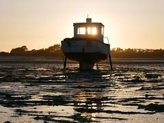 (An Arzhig) Tags: bateau ship sable sand plage beach sunset roscoff bretagne france panasonic gx800 finistère lumix