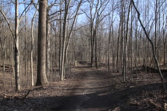Visit to Maybury State Park (Northville, Michigan) - April 2018 (cseeman) Tags: parks stateparks michiganstateparks departmentofnaturalresources michigandepartmentofnaturalresources northville michigan maybury mayburystatepark trees trails paths nature publicparks wildlife mayburyapril2018