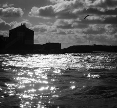 Harbour (Zara.B) Tags: harbour sea silhouettes bw monochrome blackandwhite