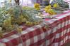 Ψίνθος (Psinthos.Net) Tags: ψίνθοσ psinthos mayday πρωτομαγιά μάιοσ μάησ άνοιξη may spring afternoon απόγευμα απόγευμαάνοιξησ ανοιξιάτικοαπόγευμα άγριαλουλούδια λουλούδια αγριολούλουδα κίτριναλουλούδια κιτρινάκια yellowflowers wildflowers flowers