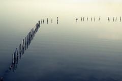 Serenity (Tilemachos Papadopoulos) Tags: qoq fuji fujifilm fujinon sky sea lines lake lagoon greece horizon xe2 clouds vanishingpoint mirrorless messolongi