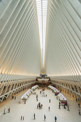 Oculus (Carrie Cole Photography) Tags: carriecolephotography manhattan oculus transportation worldtradecenter architecture newyork ribs subwaystation trainstation