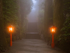 Mystic stairs (+0EV) Tags: shinto landscape winter view mist mystic stairs fog hakone unknown japan shrine