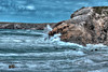 Côte Bretonne, Quiberon ( photopade (Nikonist)) Tags: côte côtebretonne paysage mer falaises rochers imac apple affinityphoto nikon hdr nikond200