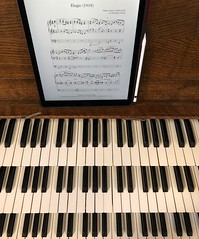 Elegiac organ (BiggestWoo) Tags: remembrance memorial sheet apple pencil pro ipadpro ipadro ipad music keyboards keyboard keys digit manual walker minster grimsby mighty big organ elegiac elegy
