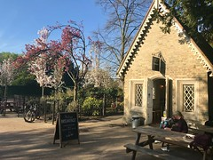 (~U~) Tags: londonspring 2018 spring london