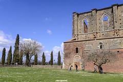 Abbazia di San Galgano, Toscana (MarcoAgustoniPhotography) Tags: abbazia di san galgano toscana abbey architettura chiesa mura incendio profili 1218