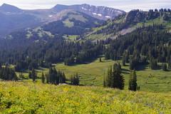 Middle Fork (akortrey) Tags: grandtetonnationalpark tetoncresttrail wyoming wilderness mountains meadow stream