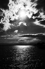 Lake Constanze (stefankamert) Tags: stefankamert landscape lakeconstance bodensee friedrichshafen clouds sun backlight water dark mood glitter horizon rays ricoh gr grii ricohgr 28mm noir