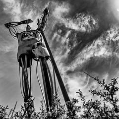 Statue d'Hermes (Fabrice Denis Photography) Tags: blackandwhitephotos france noiretblanc bwphotography saintesoulle blackandwhitephotography sculpture projet522018 nouvelleaquitaine blackandwhite monochrome monochromephotography charentemaritime rondpointdusseau blackandwhitephotographer fr