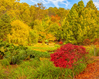 Mount Lofty Botanical Gardens